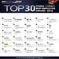 China Top 30 Logo